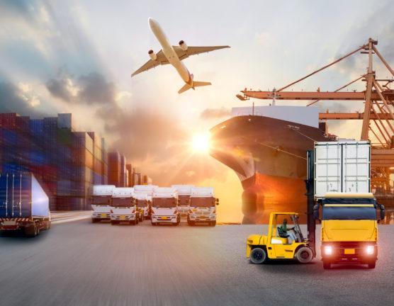 Le marché national ou l'export: où mobiliser ses efforts?